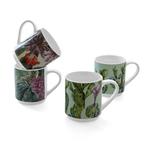 4 pack stackable arizona mugs